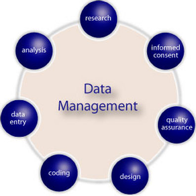 master thesis in database management